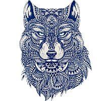 Blue Tones Detailed Wolf Head Illustration Art Photographic Print