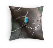 Broad Billed Hummingbird Throw Pillow