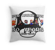 Super Mario Bros. 30th Anniversary Throw Pillow