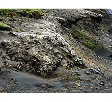 Ash-covered Hillside Photographic Print