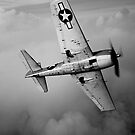 Grumman F6F Hellcat by StocktrekImages
