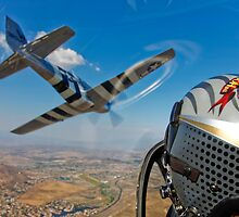 The Horsemen Aerobatic Flight Team by StocktrekImages