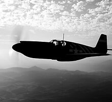 P-51A Mustang by StocktrekImages