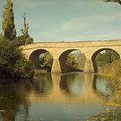 Richmond Bridge shot by Contaflex by Derwent-01