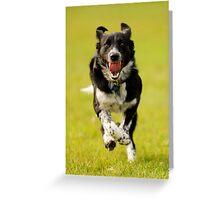 Mad Dash Greeting Card