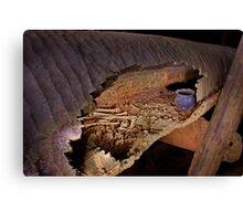 "Prehistoric log coffin in ""Skull Cave"", Thailand Canvas Print"
