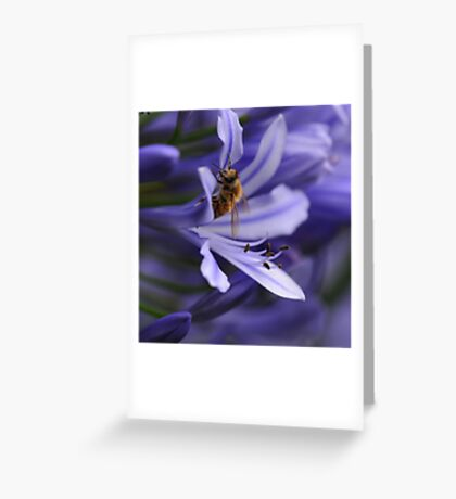 In a sea of blue Greeting Card
