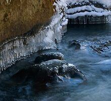 Ice Sculptures on Slippery Rock Creek by Greg Walker