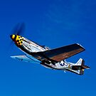 P-51D Mustang Kimberly Kaye by StocktrekImages