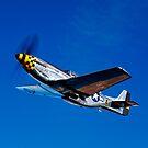 P-51D Mustang Kimberly Kaye by StocktrekImages