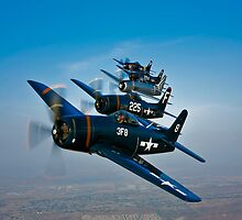 Five Grumman F8F Bearcats by StocktrekImages