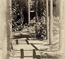 Grandmother's Garden by Carolyn Boyden