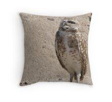 Burrowing Owl ~ Sky Scanning Throw Pillow