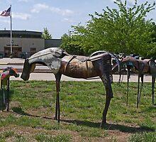Missouri mounts by Margaret  Hyde