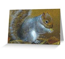 Portrait of a grey squirrel Greeting Card