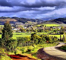 Country Road Chile by Daidalos