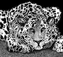 LEOPARD CAT by artbyali81
