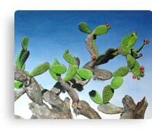 Nopal Tree - oil painting of cactus growing in Mexico Canvas Print