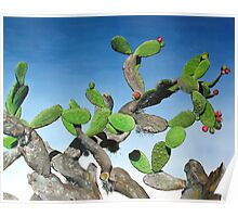 Nopal Tree - oil painting of cactus growing in Mexico Poster