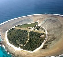 Aerial View of Lady Elliot Island  by AmyLee2694