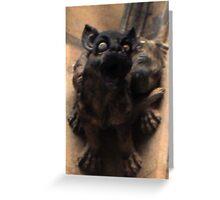 Cat above- Prague Greeting Card