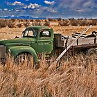 Out to pasture 2 by Bryan D. Spellman
