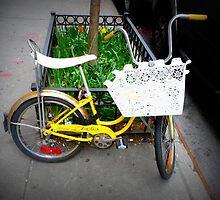 sweet ride by ShellyKay
