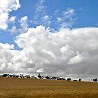 Under a Big Sky by Helen Vercoe