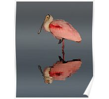 Spoonbill Reflection- Roseate Spoonbill Poster