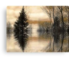 """Mirror"" Canvas Print"