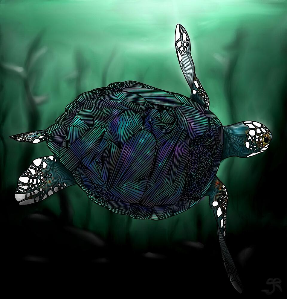 Sea Turtle by Ben Geiger