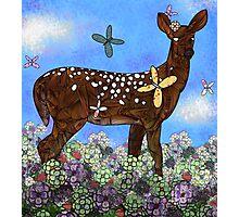 Deer Photographic Print