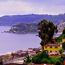 Bay of Tomé, Chile by Daidalos