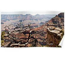 Eastern End, South Rim Poster