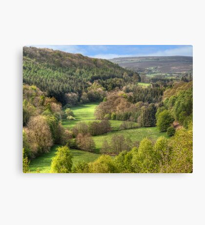 The View from Treacle Mansion Canvas Print