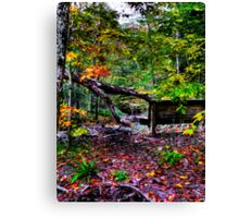 Creekside View Canvas Print