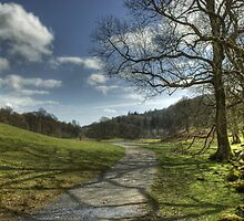 The Footpath By The Brathay by Jamie  Green
