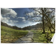 The Footpath By The Brathay Poster