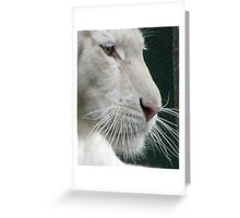 A White Tiger Up Close Greeting Card