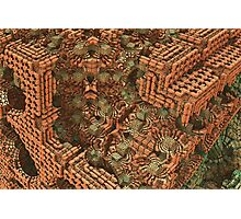 Bricks and Mortar Photographic Print