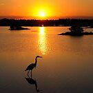 Blackpoint Sunrise- MINWR by Tom Dunkerton
