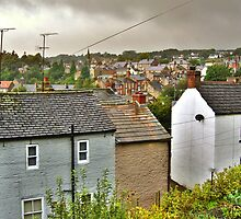 Rain On The Rooftops Of Richmond by Mat Robinson