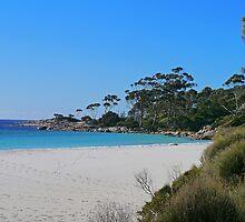 Beach, St Helens, Tasmania, Australia by Margaret  Hyde