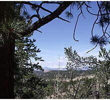 Distant View from the Road to Cripple Creek Photographic Print