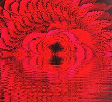 Super Rose Illusion  (UF0266) by barrowda