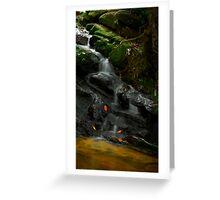Waterfall @ Gunung Jerai Greeting Card