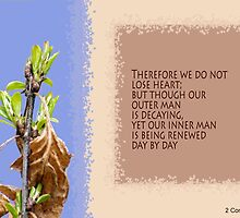 Decaying and Being Renewed ~ 2 Cor 4:16 by Robin Clifton