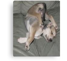 sure i can sleep like this!! Canvas Print