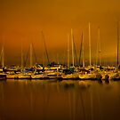 Night Glow over the Marina by camfischer