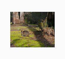 Wallaby, Leven Canyon Regional Reserve, Tasmania, Australia Unisex T-Shirt